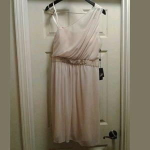 Adrianna Papell Sheer Almond Off Shoulder Dress 12
